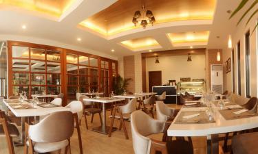 Olivias Cafe 2